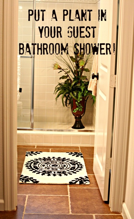 plant_shower